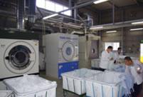 洗濯作業の様子